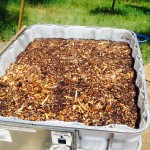 Soaking hopper - IBC tote full of water-logged wood chips.