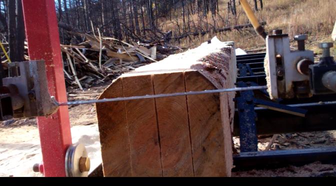 Sawmill 101